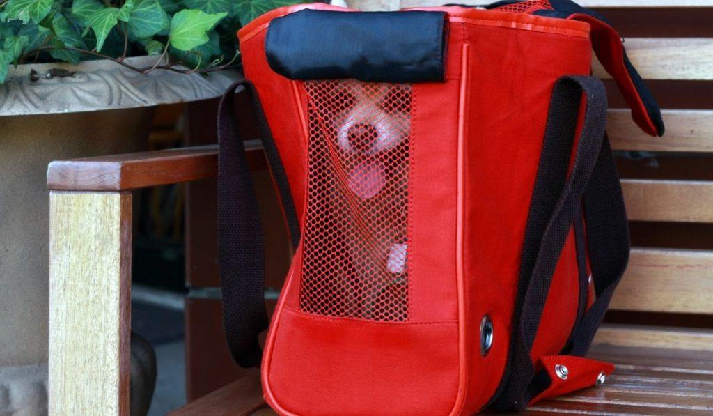 dog inside a travelling bag